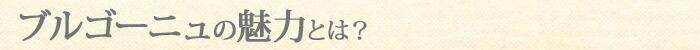 ブルゴーニュの魅力とは?