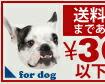 300円以下犬
