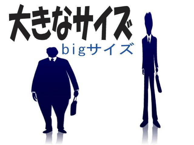 大きなサイズ-Big Size-