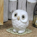 Feng Shui OWL! White OWL health luck in profit! Shin Raku and OWL figurines / pottery OWL / OWL / or kimono / and while big / pottery / luck / pottery / gift