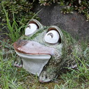 Shigaraki baked 10, laughing eyes frog! Good luck frog / garden to the front door before pottery frog! / Ceramics / pottery and while big frog shine / frog / ware and Shigaraki / frog