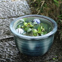 No. 10 green vidro water bowls! Shin Raku suiren pots! Ideal for fish bowls, fish bowl! Water lilies pots / pottery water lily pot / Lotus pots / already pot / medaka pots / pots / pottery / water coupled pots / water bowl / water lilies pots / easy bake