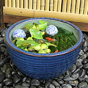 No. 10 cucumber color water bowls Shin Raku suiren pots! Ideal for fish bowls, fish bowl! Water lilies pots / pottery water lily pot / Lotus pots / already pot / medaka pots / pots / pottery / water coupled pots / water bowl / water lilies pots / easy ba