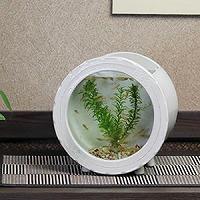 陶器水槽丸型(白色)