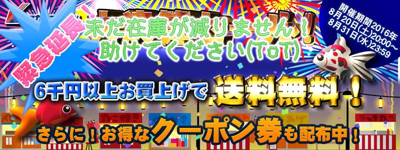 20160820-yoko.jpg
