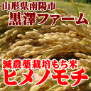 1 kg of Yamagata product decrease pesticide cultivation glutinous rice Himeno rice cake
