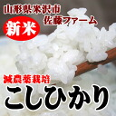 Reduced pesticide Koshi Hikari 5 kg scheduled to be shipped from early October]