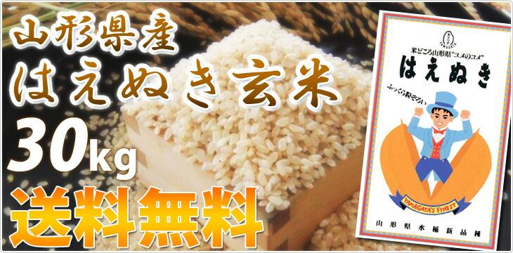 はえぬき 玄米 30kg