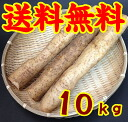 Yam (Yam) 10 kg * additional shipping, Northeast takes 300 yen and Hokkaido-Okinawa 500 yen * (10001247)