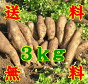Fruits like yacon raw potatoes 3 kg * additional shipping, Northeast takes 300 yen and Hokkaido-Okinawa 500 yen * (10000916)