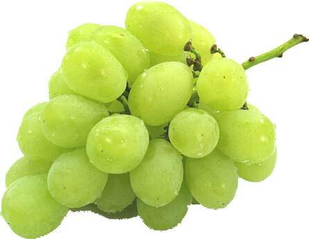绿葡萄 2 公斤框约 4 v)