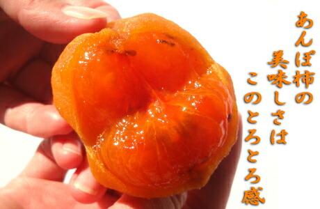とろっとろのあんぽ柿