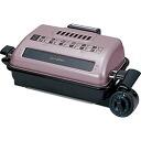 Izumi versatile roaster IRM-03P