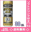 30 canned 250 ml of Hikari food organic ginger ale Motoiri (light food)
