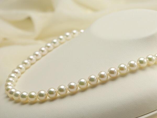 【真珠の本場 伊勢志摩よりお届け】7.5-8.0mm上品グリーンの魅力的な色目♪あこや本真珠ネックレス【nc0166】