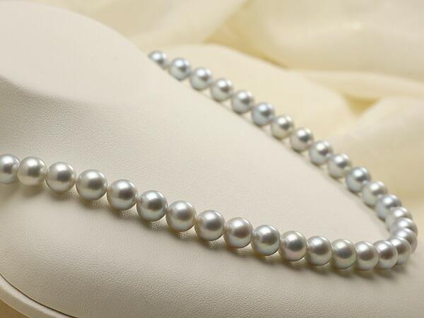 【真珠の本場 伊勢志摩よりお届け】淡いシルバーグレー♪8.0-8.5mmあこや本真珠シルバーグレーネックレス