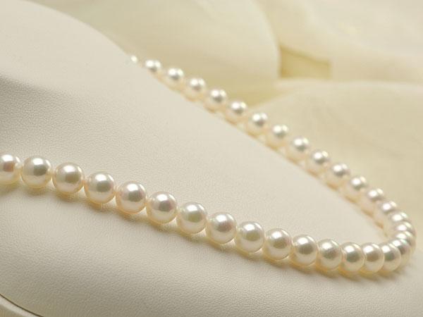【真珠の本場 伊勢志摩よりお届け】淡いピンクグリーンが魅力♪7.5-8.0mmあこや本真珠パールネックレス【nc0546】