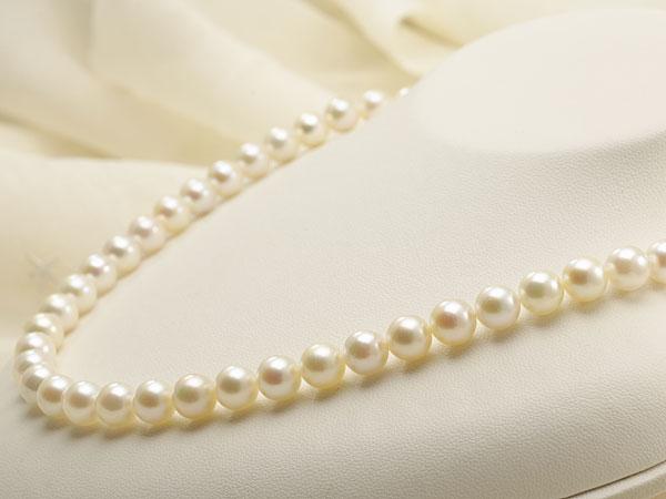 【真珠の本場 伊勢志摩よりお届け】ほのかなグリーンピンク♪7.5〜8.0mmあこや本真珠パールネックレス【nc0653】