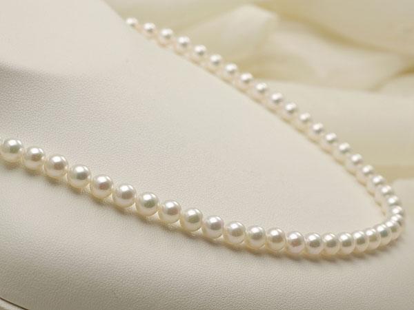 【真珠の本場 伊勢志摩よりお届け】5.5-6.0mm上品グリーンの美しい色目♪あこや本真珠パールネックレス【nc0361】