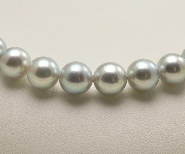 【真珠の本場 伊勢志摩よりお届け】グレーの深みある輝き♪8.5〜9.0mmあこや本真珠シルバーグレーパールネックレス【nc0479】(正面アップ)