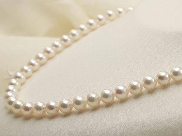 【真珠の本場 伊勢志摩よりお届け】7.5〜8.0mm華やかな明るい色目♪あこや本真珠ネックレス【nc0486】