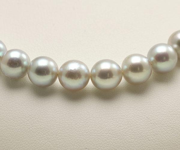 【真珠の本場 伊勢志摩よりお届け】深みのあるグレーが魅力♪8.5〜9.0mm あこや本真珠シルバーグレーパールネックレス【nc0677】(正面アップ)