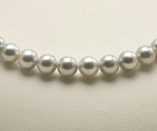 【真珠の本場 伊勢志摩よりお届け】明るめのシルバーグレー♪5.5〜6.0mmあこや本真珠シルバーグレーパールネックレス【nc0724】