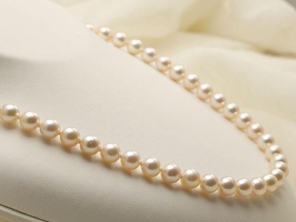 【真珠の本場 伊勢志摩よりお届け】7.5〜8.0mm淡いピンクが広がる♪あこや本真珠ネックレス【nc0752】