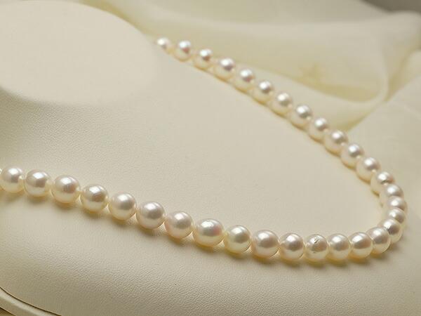 【真珠の本場 伊勢志摩よりお届け】淡いピンクにほのかなグリーン♪7.5〜8.0mmあこや本真珠ネックレス【nc0803】