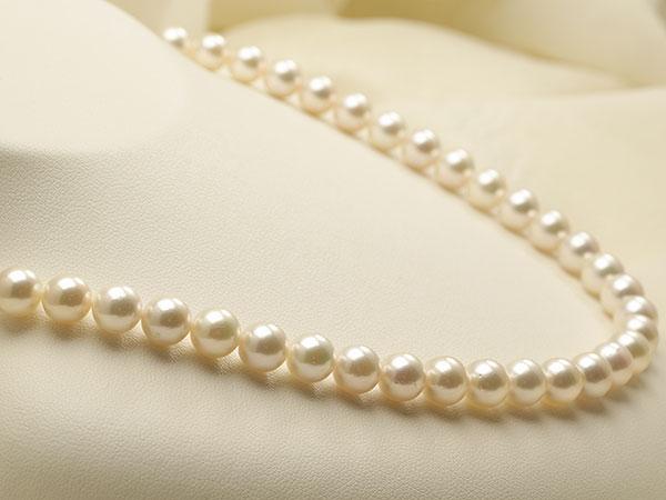 【真珠の本場 伊勢志摩よりお届け】7.5〜8.0mm上品なほんのりグリーン♪あこや本真珠ネックレス【nc0818】
