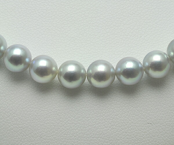 【真珠の本場 伊勢志摩よりお届け】6.5〜7.0mm あこや本真珠シルバーグレーネックレス