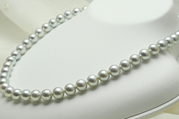 【真珠の本場 伊勢志摩よりお届け】8.0〜8.5mm あこや本真珠シルバーグレーネックレス【n0050】