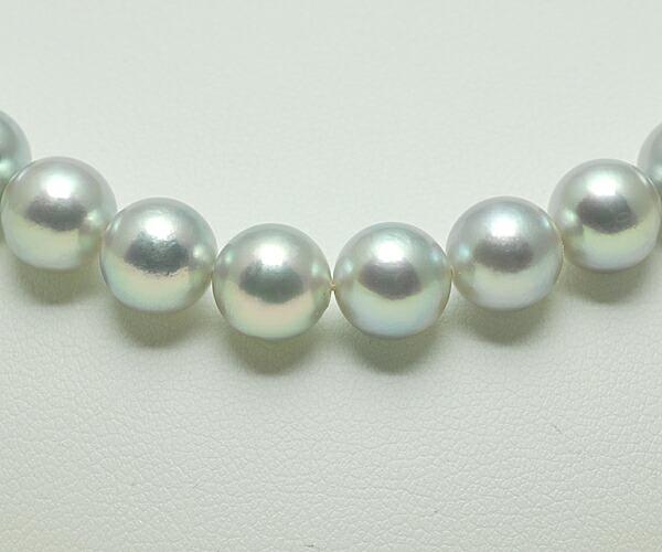 【真珠の本場 伊勢志摩よりお届け】8.0〜8.5mm あこや本真珠シルバーグレーネックレス