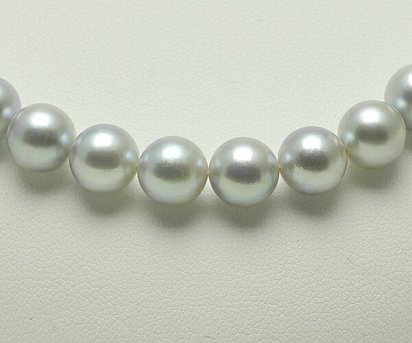 【真珠の本場 伊勢志摩よりお届け】淡いグレーの爽やかな色合い♪8.0〜8.5mm あこや本真珠シルバーグレーネックレス