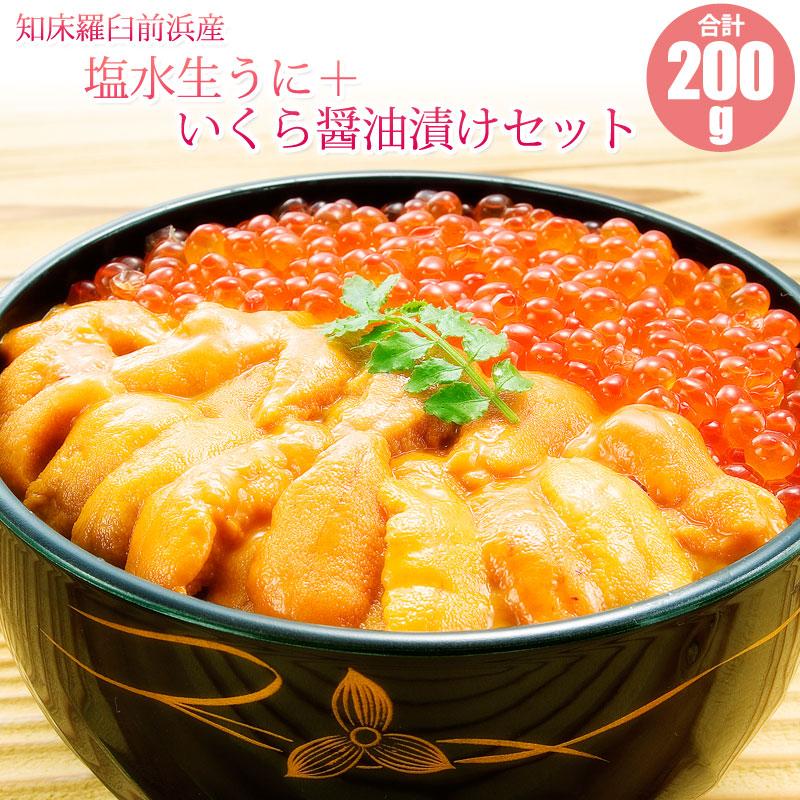 塩水生うに(エゾバフンウニ)100g+いくら醤油漬100gセット【送料無料】