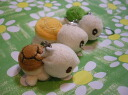 More than strap ◆ tortoise ◆ three including the sewing!
