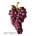 7rs0420_wine_grapes2