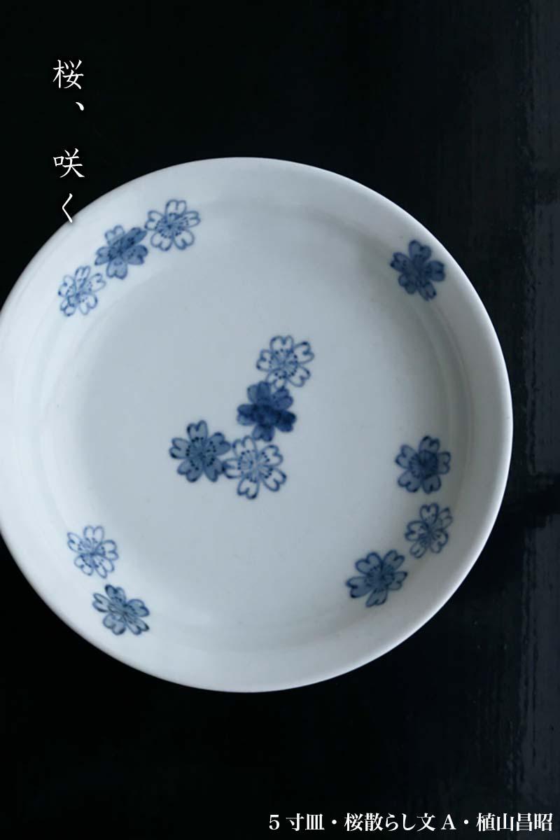 5寸皿・桜散らし文A・植山昌昭