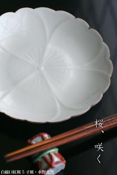 白磁口紅桜5寸皿・水野克俊