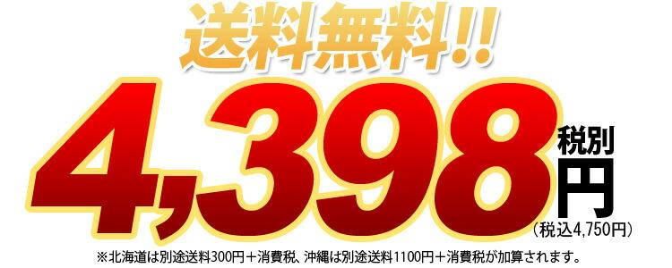 送料無料 4398円税別