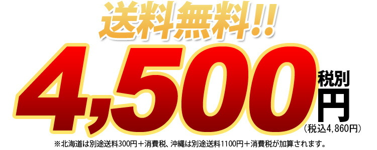 送料無料!4500円税別 北海道は別途送料300円+消費税、沖縄は別途送料700円+消費税が加算されます