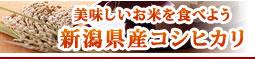 美味しいお米を食べよう 新潟県産コシヒカリ