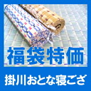 "Domestic ""Kakegawa texture"" adult 寝 mat of 添島勲商店"