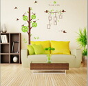 "Let's display a large size wall sticker photograph on the wall; is ""the songs of birds"""