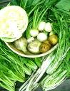 정기 구매 신고, 노 가리는 것이 식물성 유기농 하우스 무 농약 재배 1905 엔 (세금 별도) 세트 × 5 회분