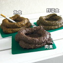 Funny! gadgets-ashtray unique-Jumbo Yes POO ashtray