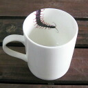Interesting goods | Mug cup | of an insect, the pest Insect mug _ centipede