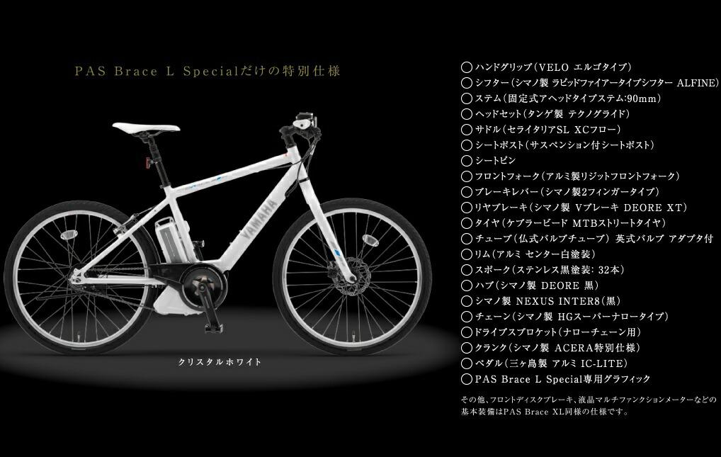 ... 電動自転車 (20th Anniversary 完全