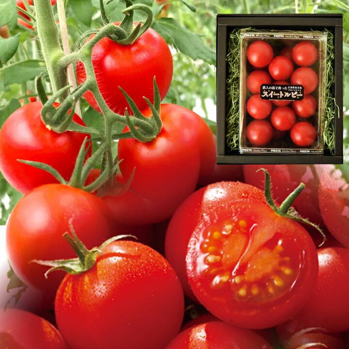 フルーツトマト ジューシー 甘い 贈り物