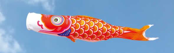 ゴールド鯉 ナイロンタフタ 家紋・名入れ不可